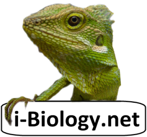 i-Biology.net