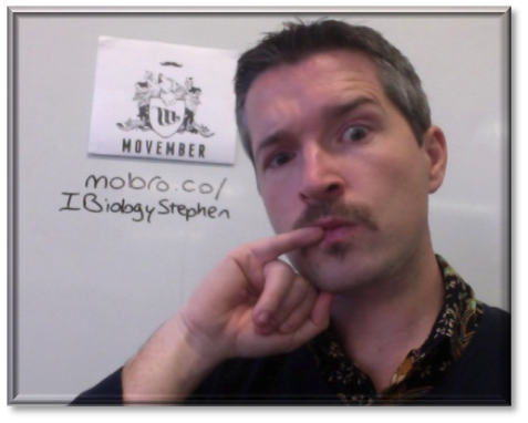 One meeeelion viewers. Link to my Movember profile.