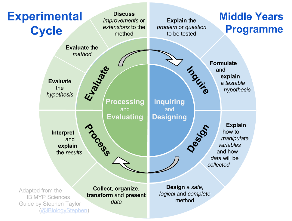 experimental cycle and other diagrams i biology rh i biology net
