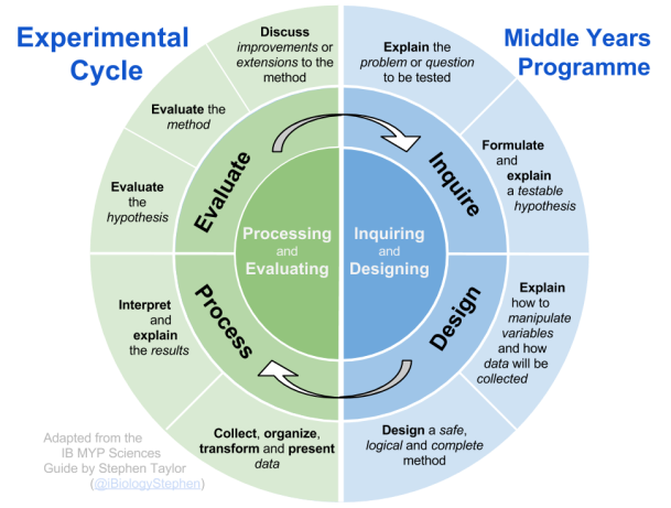 Experimental Cycle Diagram (with text)