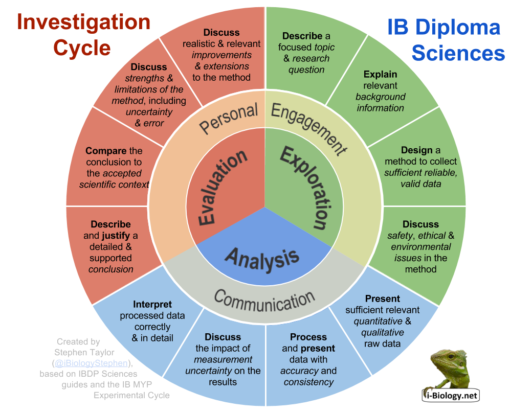 ibbio investigation cycle i biology rh i biology net